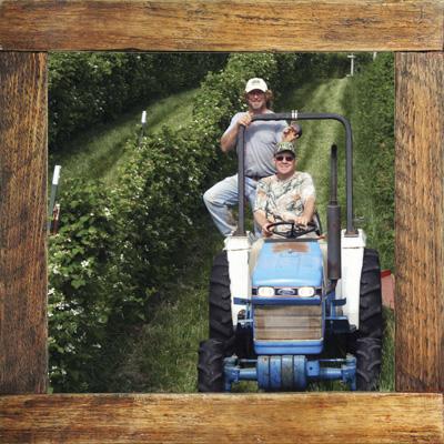 photo-grower-cole-berry-farm